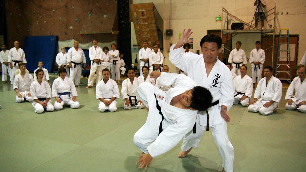 Ushiro Karate – International Karate-Seminar 2017
